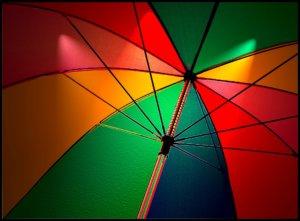 commercial umbrella insurance Snohomish, WA